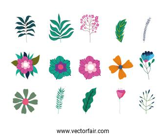 spring sale, flowers leaves branch foliage nature botanical icons