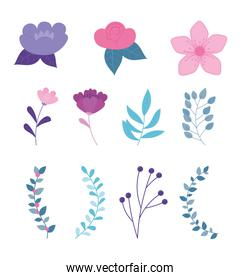 flowers branch leaves botanical nature icons