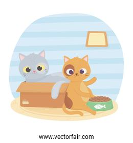 cats make me happy, cat in box and other with food cartoon
