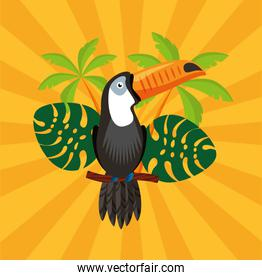 canival of rio brazilian celebration with toucan