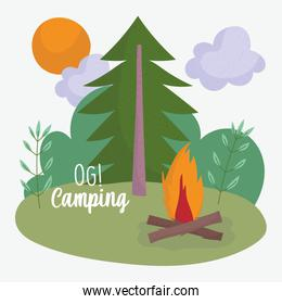 camping bonfire tree sun sky vacations activity adventure design