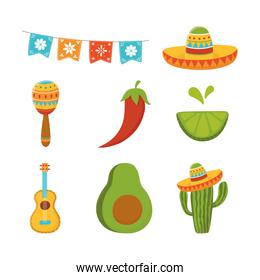 cinco de mayo guitar cactus maraca lemon avocado mexican icons