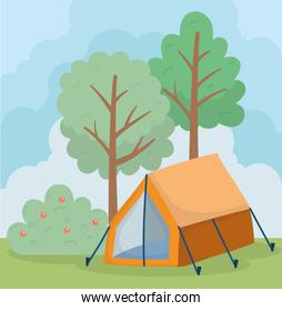 camping tent bush apples fruit foliage trees nature  scene
