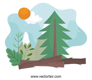 camping pine tree mountain trunk sun clouds sky cartoon