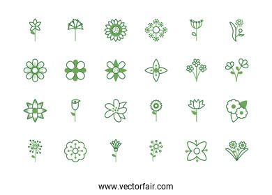 bundle of flowers half color style icons