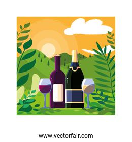 bottle and glass of wine with landscape background and nature