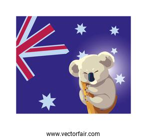 koala with australia flag in the background