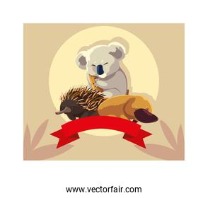 cute card with native animals of australia