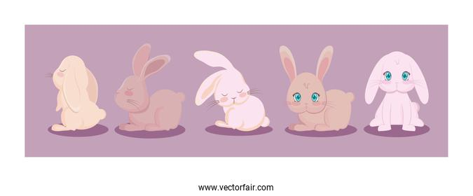 set of cute rabbits in different poses, easter card