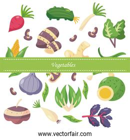 icon set of healthy vegetables, flat detail style