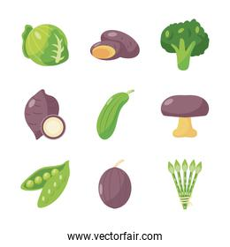 healthy vegetables icon set, flat detail style