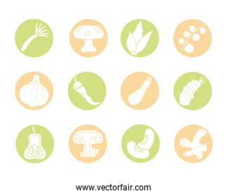 icon set of healthy vegetables, block detail style