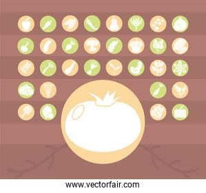 tomato and healthy vegetables icon set, block detail style