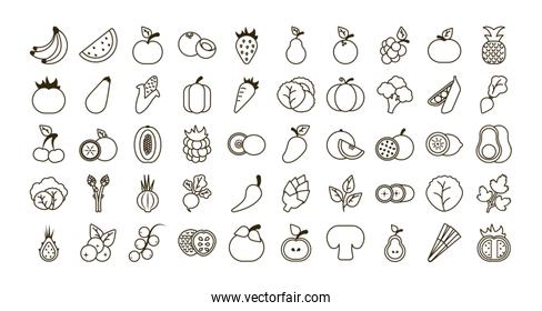 set of icons of fresh fruits and vegetables, line style icon
