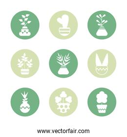 set of icons houseplants with potted, block and flat style icon
