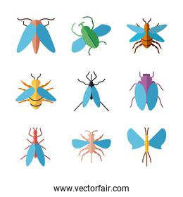 flies insects icon set, flat style