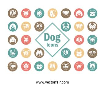set of icons of faces different breeds of dogs