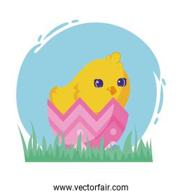 happy easter design of easter egg with cute chicken, colorful design