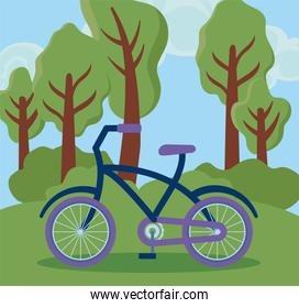 eco friendly scene with bicycle
