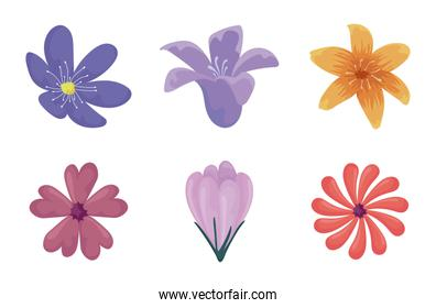 colorful flowers icon set