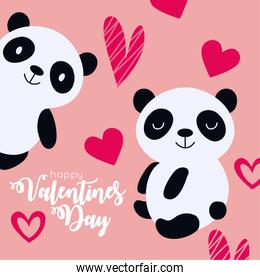 valentines day card with cute bears panda couple