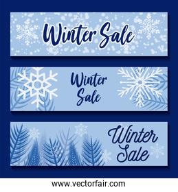 Winter sale with snowflakes and leaves vector design