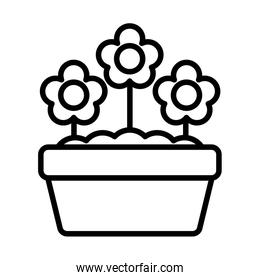 potted flowers , line style icon