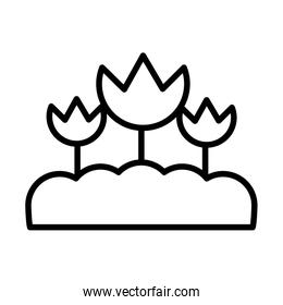 flowers planted , line style icon