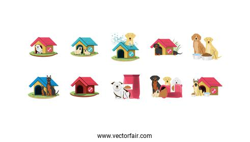 Isolated dogs mascots icon set vector design
