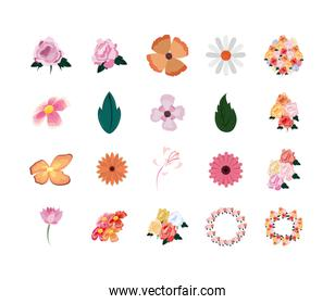 Isolated natural flowers and leaves set vector design