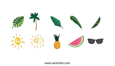 Isolated summer icons set vector