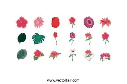 Isolated natural flowers set vector design