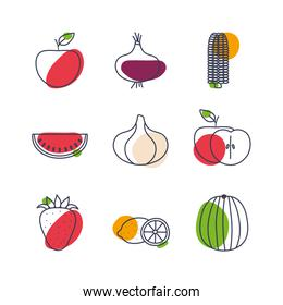 Fruits and vegetables line color style icon set vector design