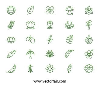Biodiversity leaves and flowers gradient style icon set vector design