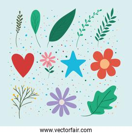 leaves flowers heart and star set vector design
