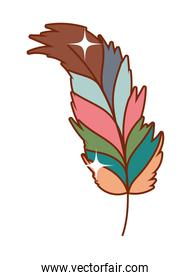 Isolated boho feather vector design
