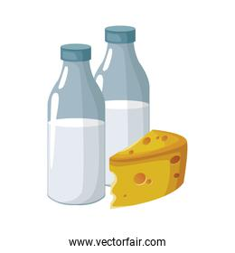 milk bottles and cheese piece
