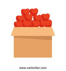 boxes with apples fruit icon