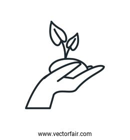 Isolated plant over hand line style icon vector design