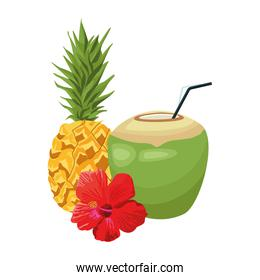 pineapple and coconut drink with tropical flower