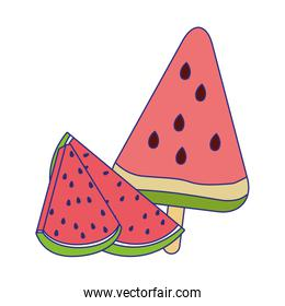 ice llolly of watermelon fruit