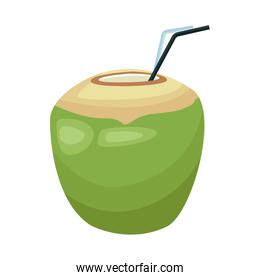 coconut drink icon, colorful design