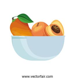 bowl with fruits icon, colorful design