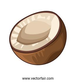 half coconut icon, flat design