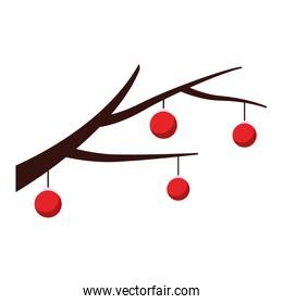 branch with christmas balls, flat design