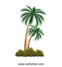 palms and bushes icon, flat design