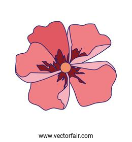 tropical flower icon, colorful design