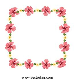 decorative floral frame icon