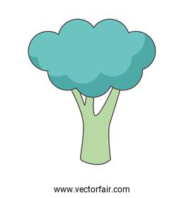 broccoli vegetable icon, colorful design