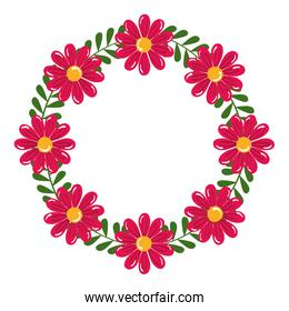 Isolated pink flowers with leaves circle vector design